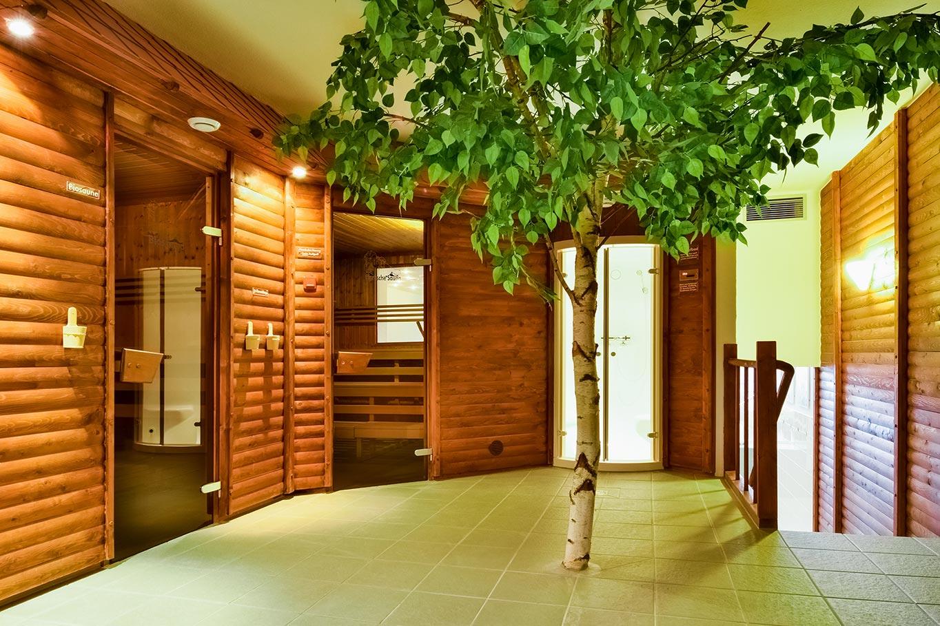 Bansiner Hof Sauna